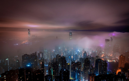 La pollution lumineuse : quel impact sur l'environnement ?